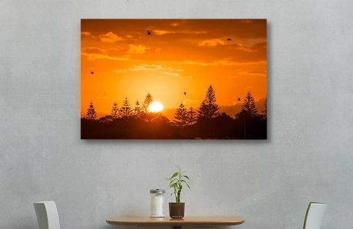 forster-tuncurry-002-photography-canvas-reality-design